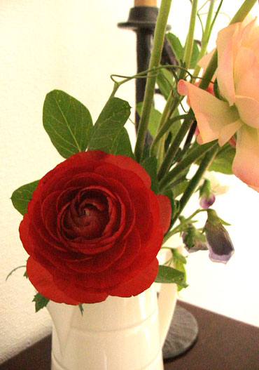 Spring_flower_4